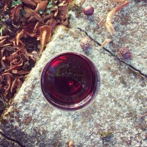 les couleurs du vin du manoir des schistes